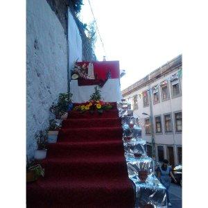 Festas de São Roque